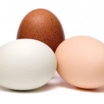 Eggs-May-13-p28-660x484